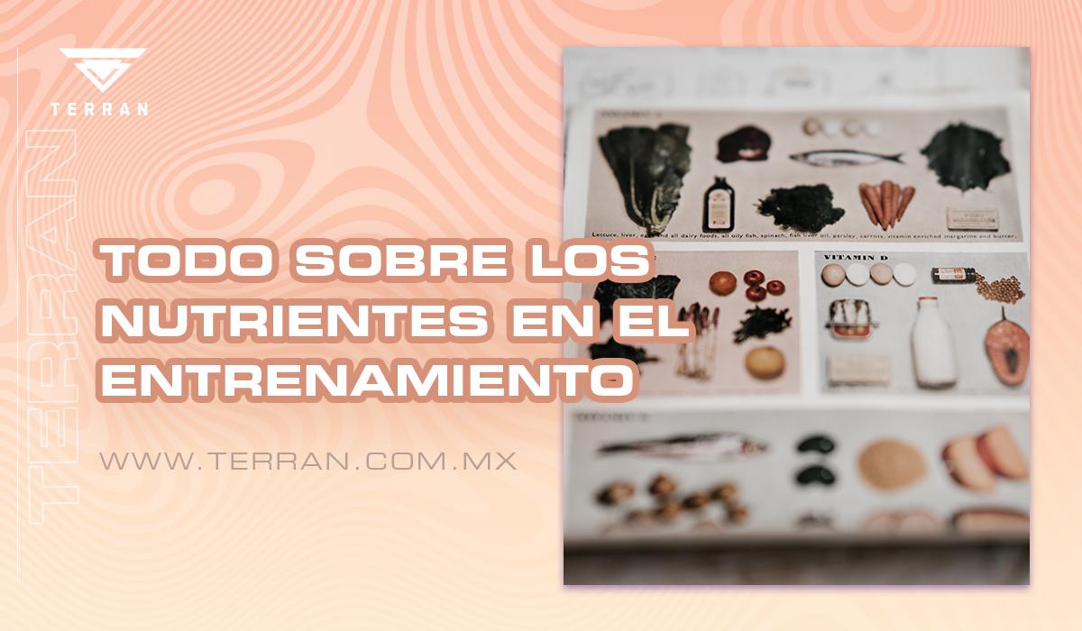 TODO SOBRE LOS NUTRIENTES EN EL ENTRENAMIENTO